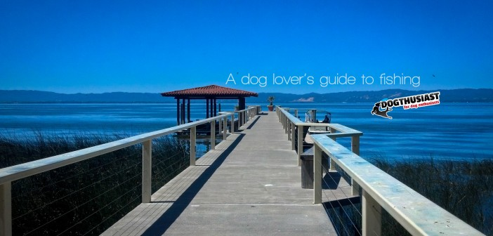 A Dog Lover's Guide to Fishing