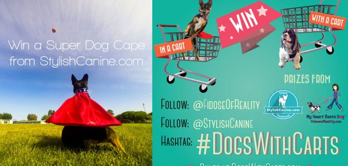 Dogs With Carts Contest