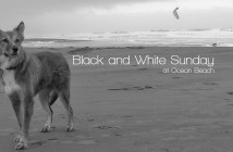 black-and-white-OB-featured