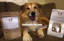 Ayurveda for pets