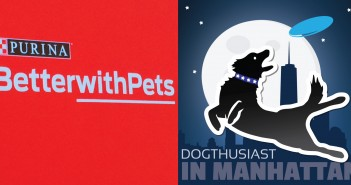 dogthusiast-manhattan-betterwithpets-351x185 A dog blog for active dogs