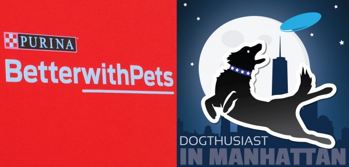 dogthusiast-manhattan-betterwithpets-702x336 A dog blog for active dogs