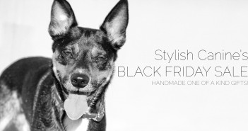 BlackFridaySale-featured-351x185 A dog blog for active dogs