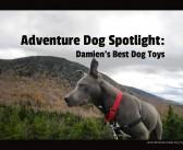 Adventure Dog Spotlight: Mark from Damien's Best Dog Toys