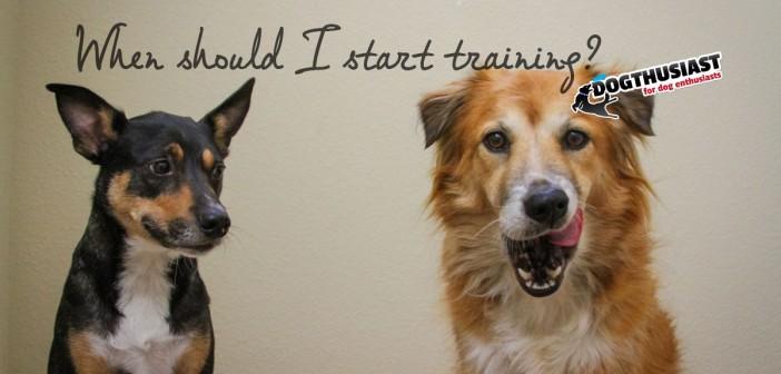 When should I start training my puppy?