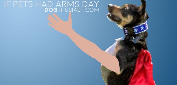 If Pets Had Arms Day