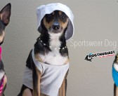 Sportswear Dog: Redefining the gym for dogs everywhere