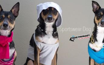 Sportswear Dog