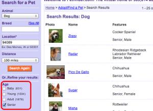 petfinder-300x218 10 reasons to adopt a senior dog