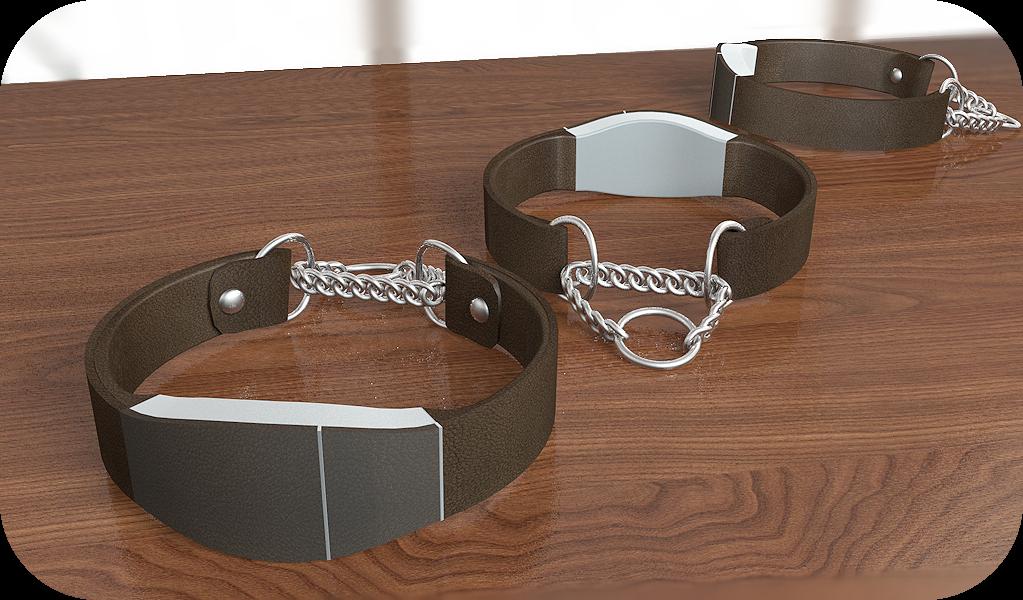 smartcollar2 How smart is your dog collar?
