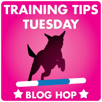 TrainingTipTuesday200 Training Tips Tuesday: Dog scared of nail trims? Train your dog to file his own!